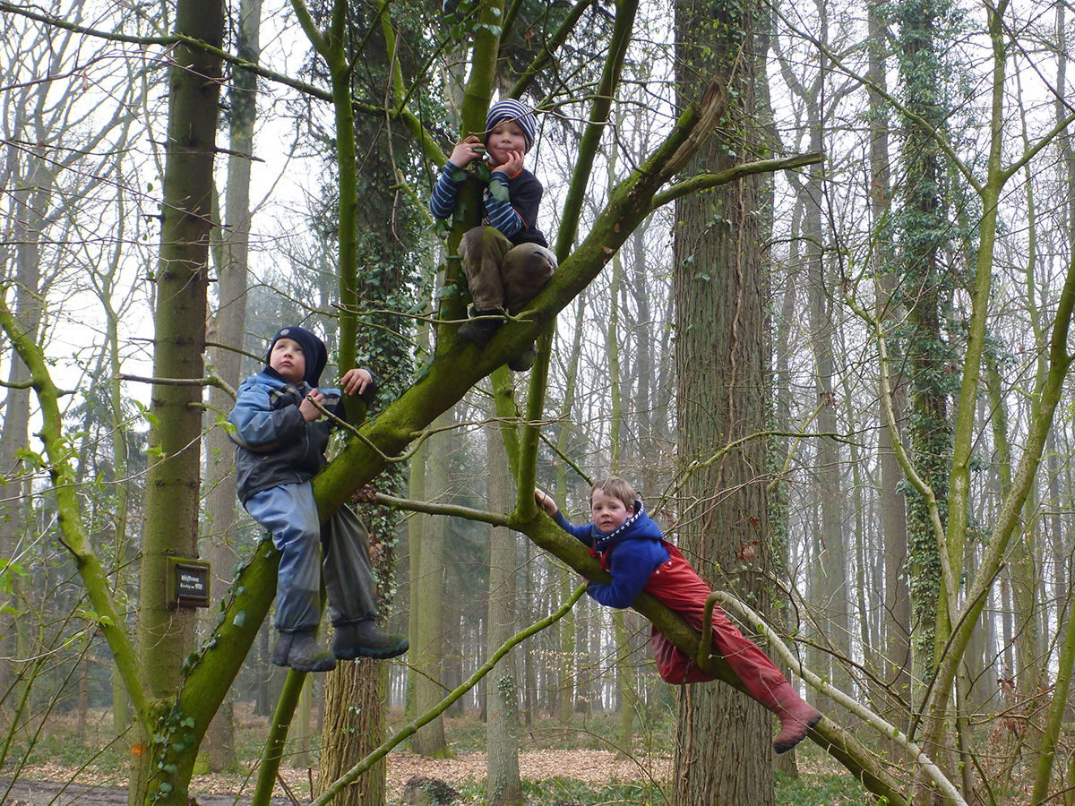 Waldkindergarten_Warendorf_Klettern